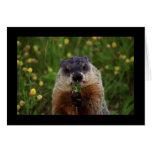 Groundhog con las flores tarjeton