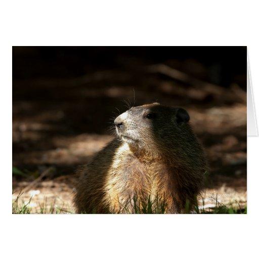Groundhog Day II Greeting Card