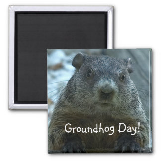 Groundhog Day!! 2 Inch Square Magnet