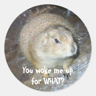 Groundhog Day Stickers