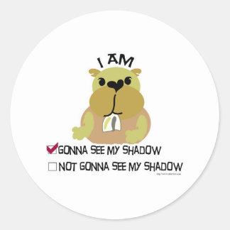Groundhog day vote  shadow classic round sticker