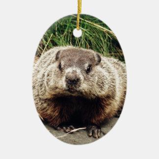 Groundhog Adorno De Navidad