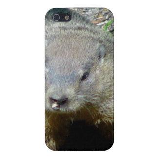 Groundhog iPhone 5 Cárcasa