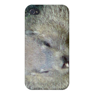 Groundhog iPhone Case iPhone 4 Cases