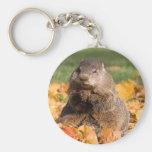 Groundhog Key Chain