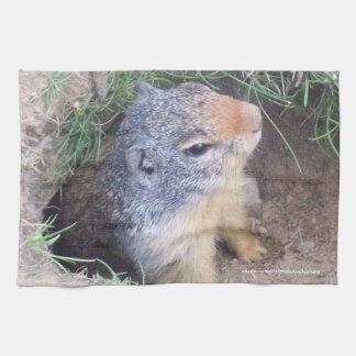 Groundhog Kitchen Towel