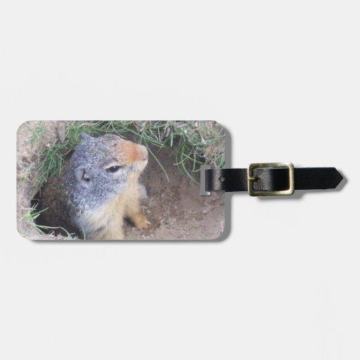 Groundhog Luggage Tag