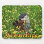 Groundhog Mousepad Alfombrillas De Ratones