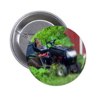 Groundhog on a  Lawn Mower Button