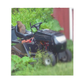 Groundhog on a Lawn Mower Notepad