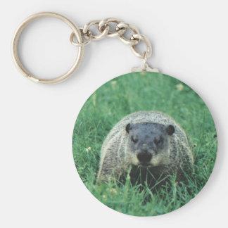 groundhog (Phil) Basic Round Button Keychain