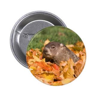 Groundhog Pin