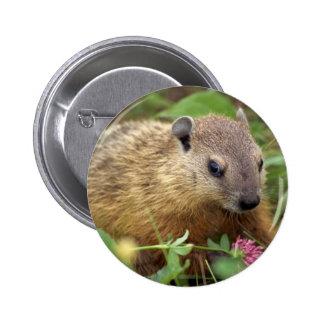 Groundhog Pin Redondo De 2 Pulgadas