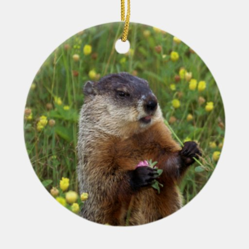 Groundhog Pose Double-Sided Ceramic Round Christmas Ornament
