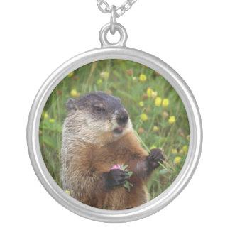 Groundhog Pose Round Pendant Necklace