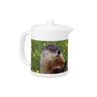 Groundhog Pose Teapot