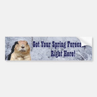 Groundhog Spring Forecast Bumper Sticker