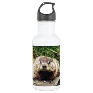 Groundhog Stainless Steel Water Bottle