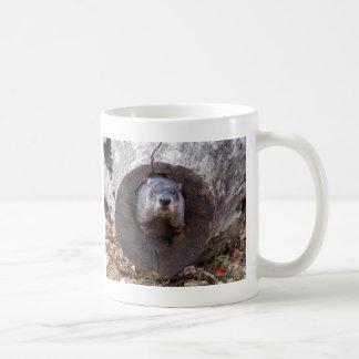 Groundhog Tazas De Café