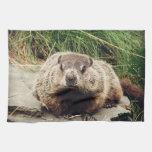 Groundhog Towel