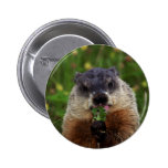 Groundhog With Flowers Buttons