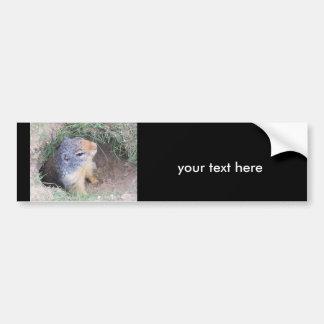 Groundhog your text here. bumper sticker car bumper sticker