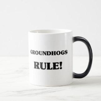 Groundhogs Rule 11 Oz Magic Heat Color-Changing Coffee Mug