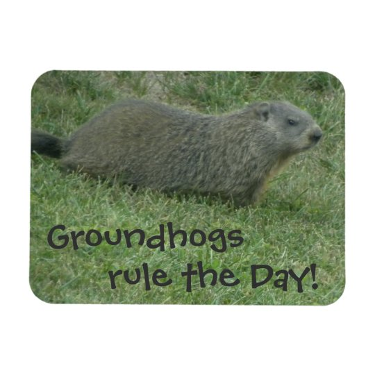 Groundhogs Rule the Day  - Groundhog Day Magnet