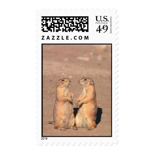 Groundhogs Stamp