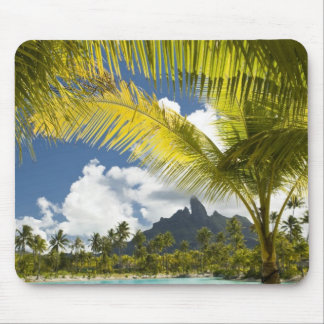 Grounds and scenics of the new luxury St. Regis Mouse Pads
