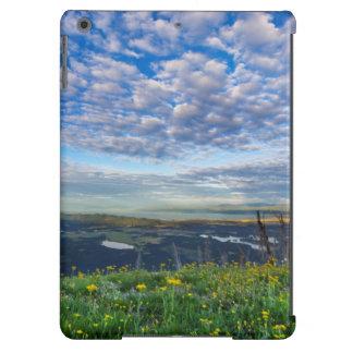 Groundsel Wildflowers in the Swan Range iPad Air Case