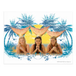 Group Blue Palm Tree Graphic Postcards