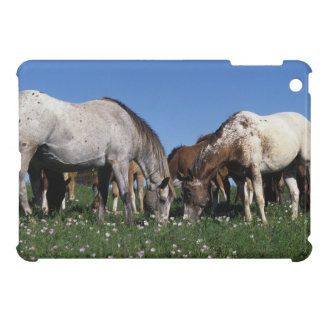 Group of Appaloosa Horses Grazing Case For The iPad Mini