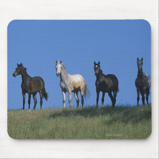 Group of Arabs Mouse Pad