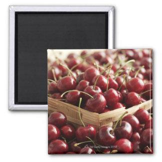 Group of cherries in punnett 2 inch square magnet