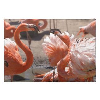 Group of Cuba flamingos Cloth Placemat