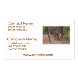 Group of Deer Business Card Template