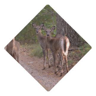 Group of Deer Graduation Cap Topper