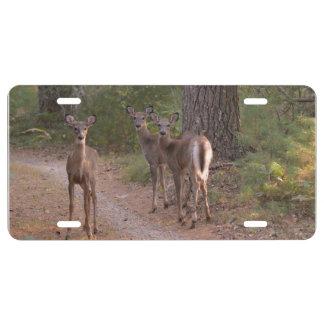 Group of Deer License Plate