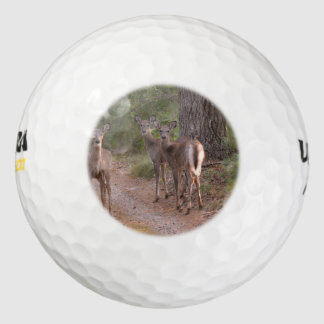 Group of Deer Pack Of Golf Balls