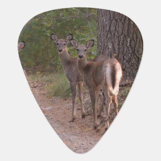 Group of Deer Pick