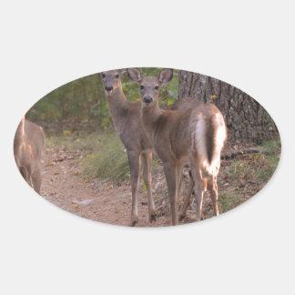 Group of Deer Oval Sticker