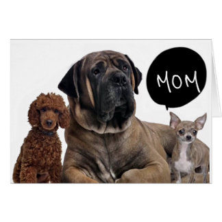 GROUP OF DOGS *BEST BIRTHDAY EVER MOM* WISHES CARD