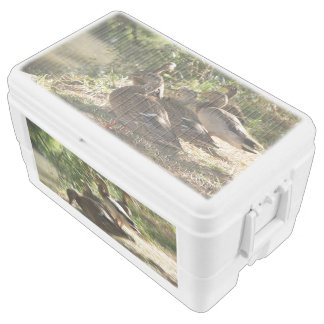 Group Of Ducks, 48 Quart Duo Deco Ice Chest