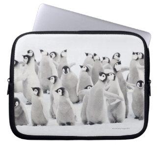 Group of Emperor penguins (Aptenodytes forsteri) Computer Sleeve