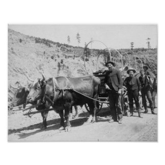Group of Gold Prospectors Photograph Poster