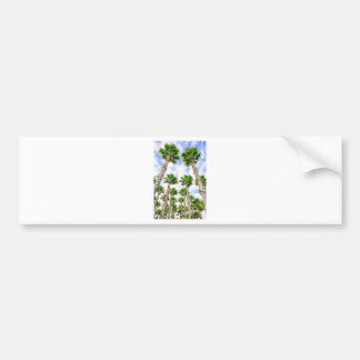 Group of high straight palm trees bumper sticker