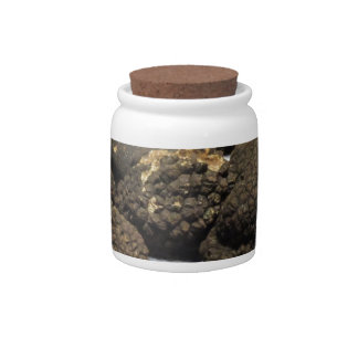 Group of italian expensive black truffles candy dish