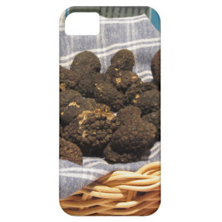 Group of italian expensive black truffles iPhone SE/5/5s case