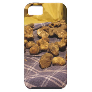 Group of italian expensive white truffles iPhone SE/5/5s case